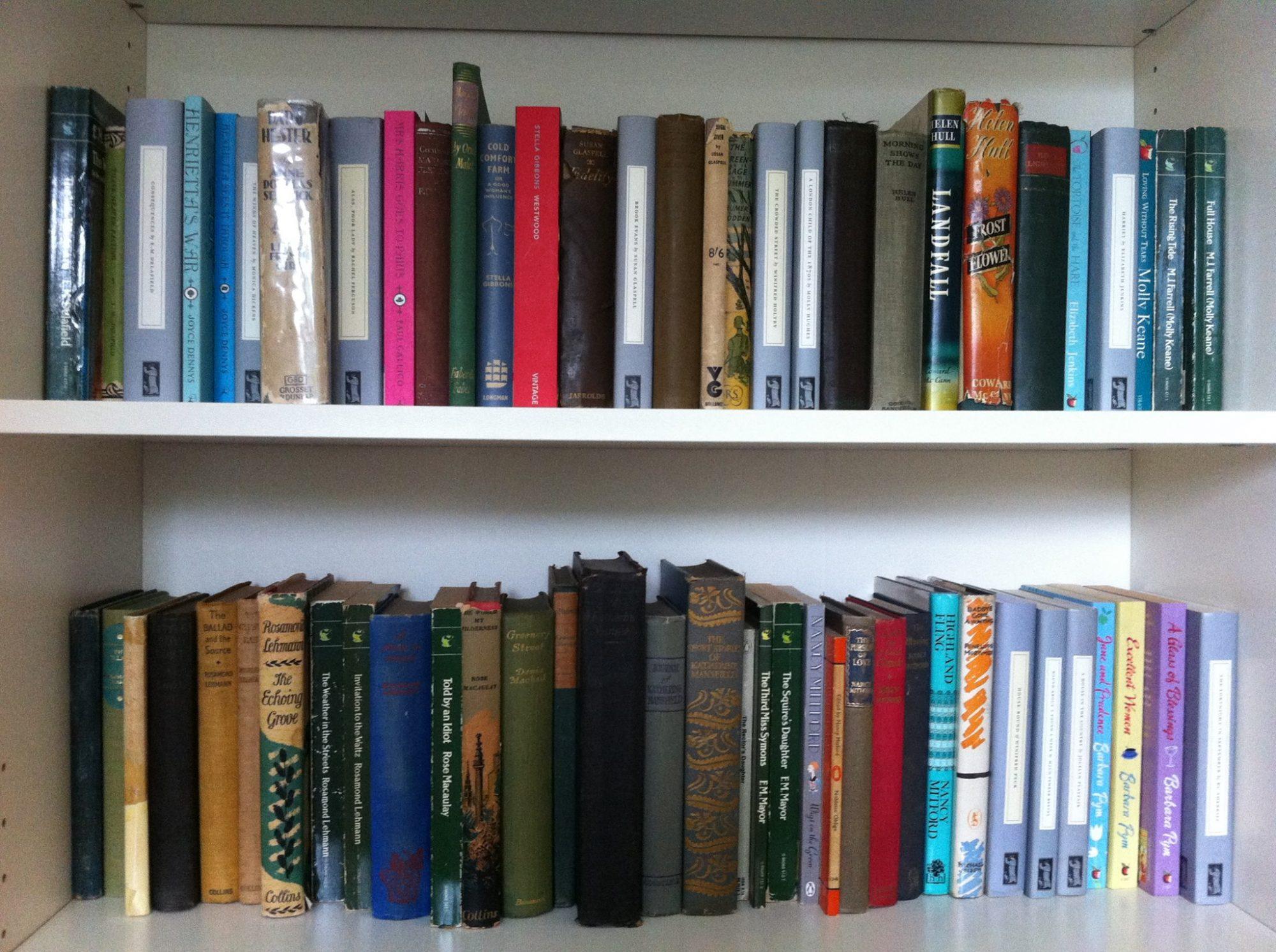 Serengeti Scholars Tanzania Aunt Marys Bookshelf
